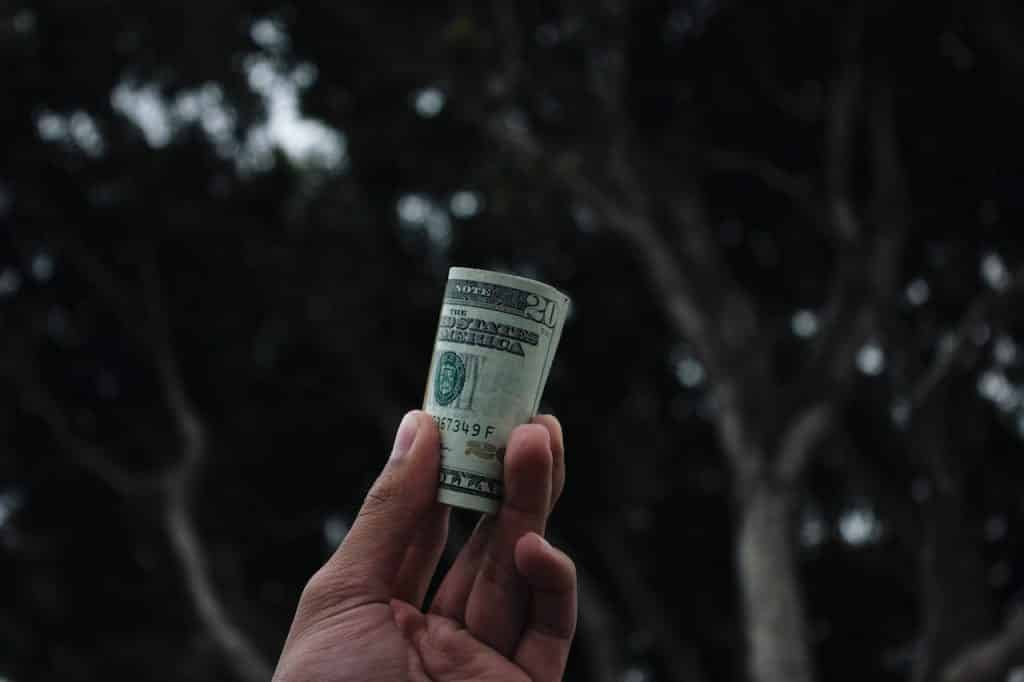 A hand holding a roll of money saved