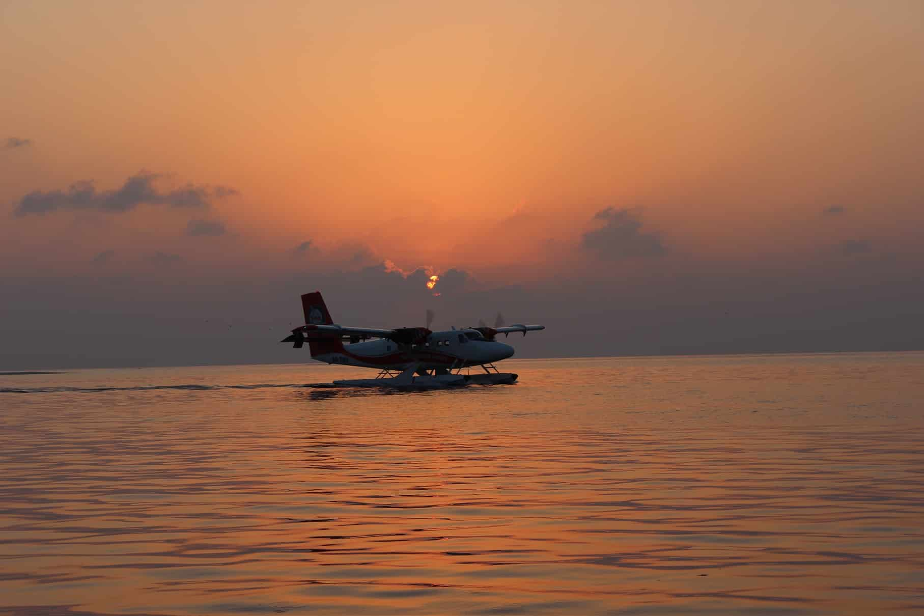 seaplane landing at sunset