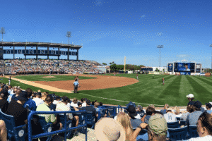 Travel to Arizona or Florida for a MLB Spring Training game.