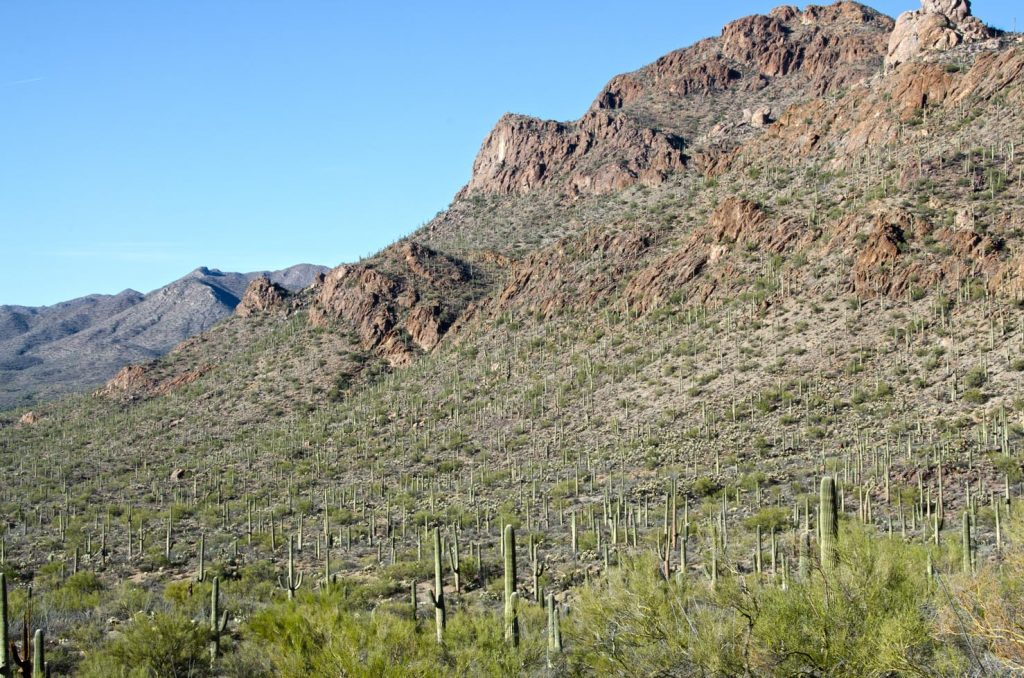 Photo Tripping America - Saguaro - Camping World