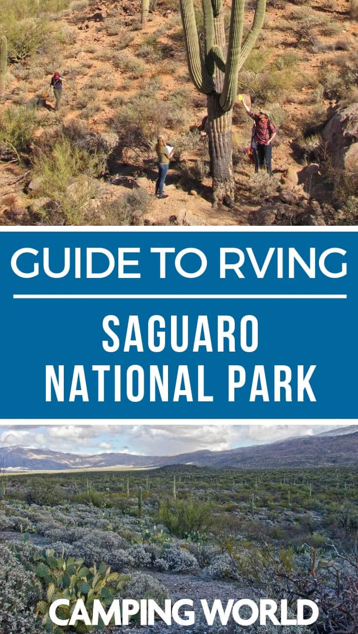 Camping World's Guide to Saguaro National Park