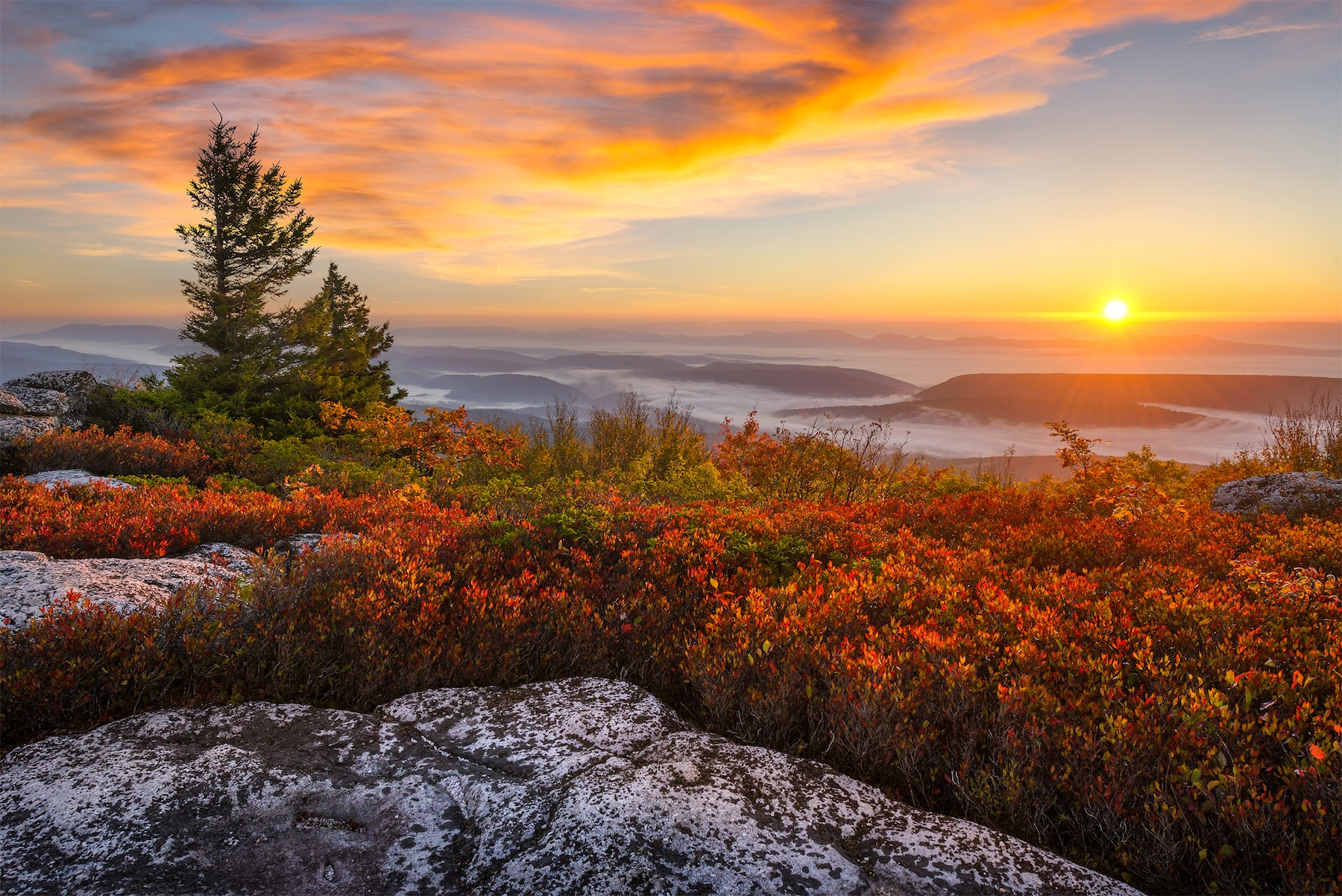 Dawn breaks over the Appalachian Mountains. Warm light spills over this autumn landscape at West Virginia's Dolly Sods.