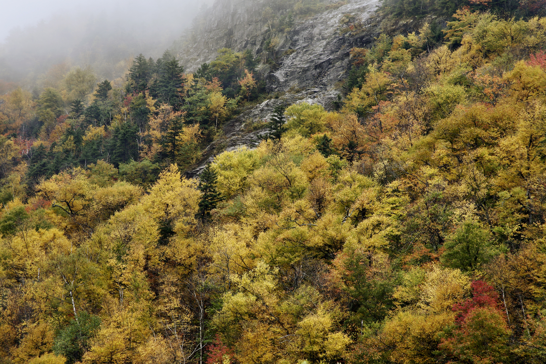Crawford Notch State Park, White Mountains, New Hampshire