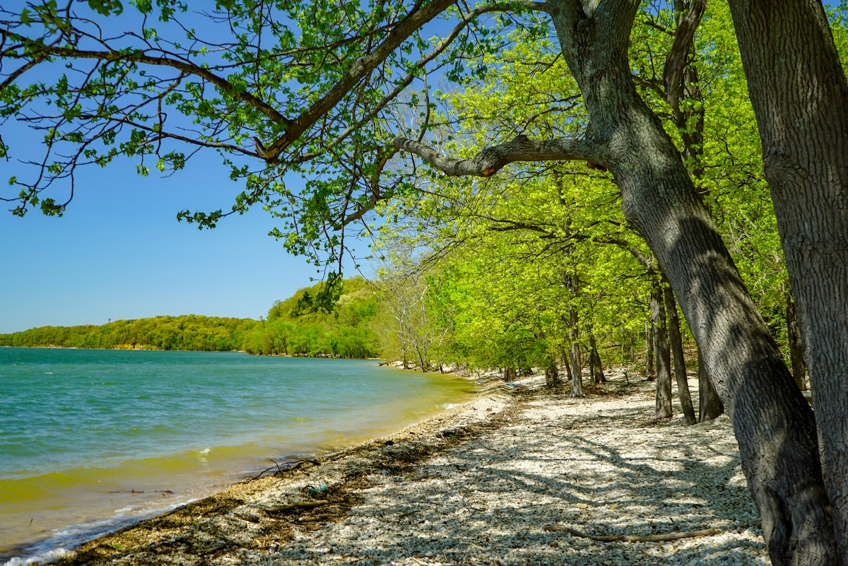 Scenic sandy beach with blue water and green trees at a park in Kentucky