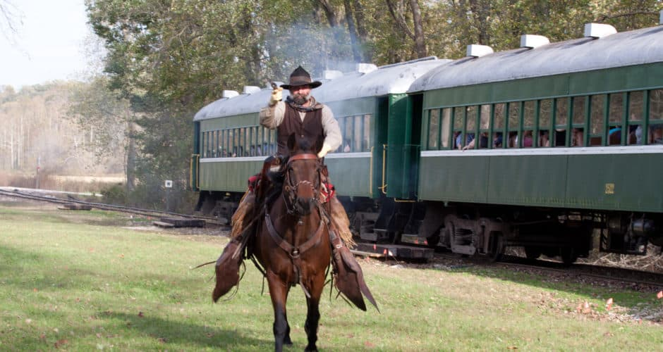 Cowboy Train Robber