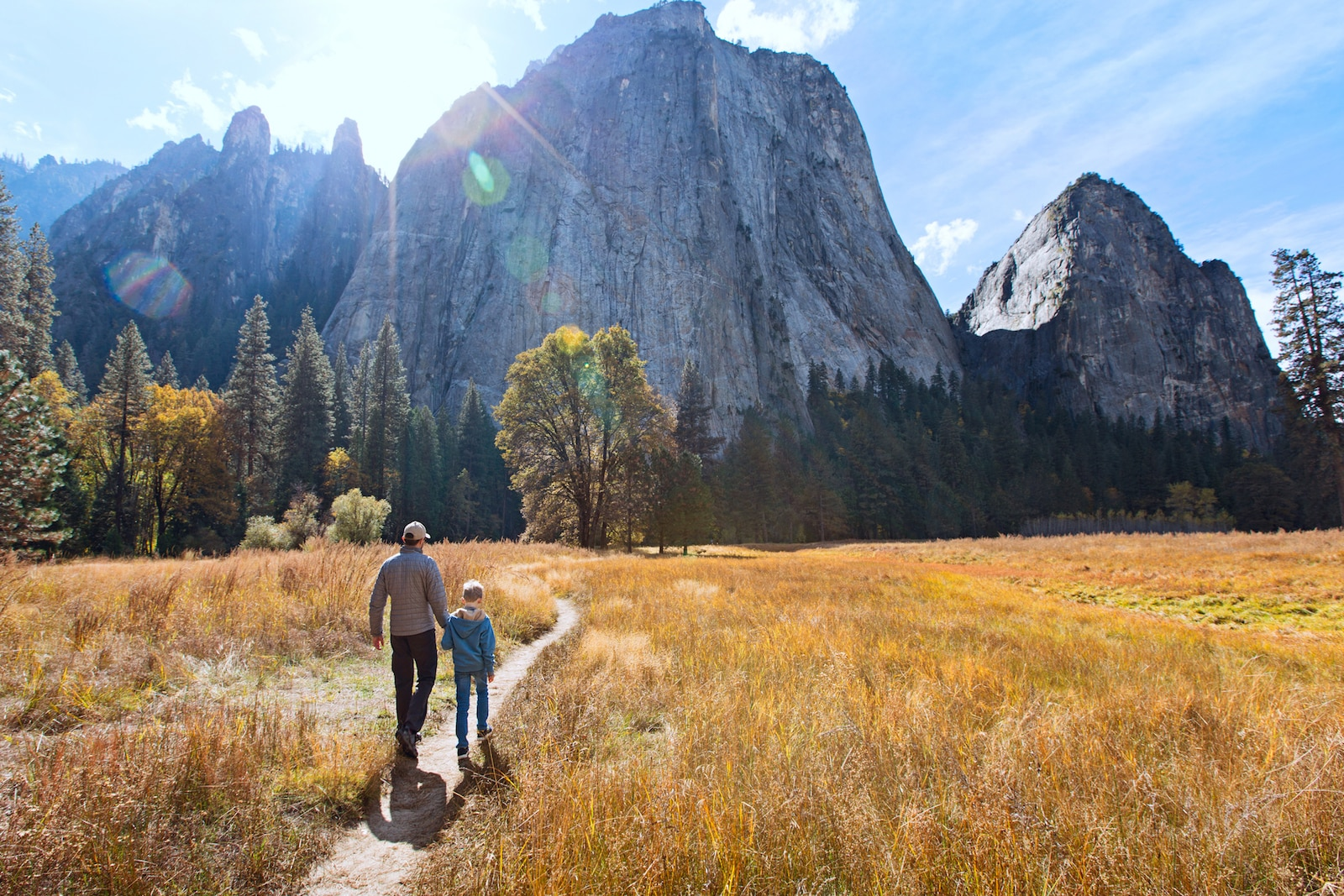 back view of active family of two, father and son, enjoying valley and mountain view in yosemite national park, california, active family vacation concept (back view of active family of two, father and son, enjoying valley and mountain view in yosemit