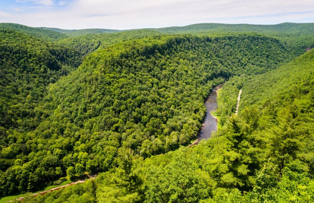 Pine Creek Gorge
