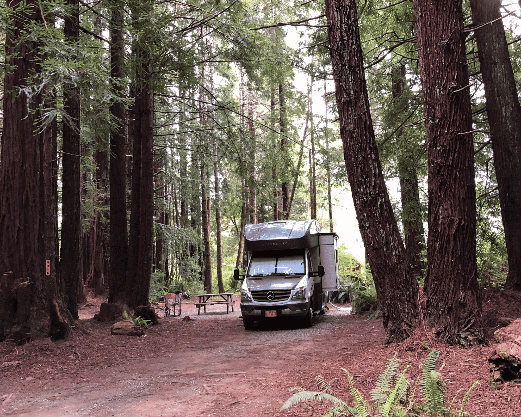 Camping in Redwoods National Park