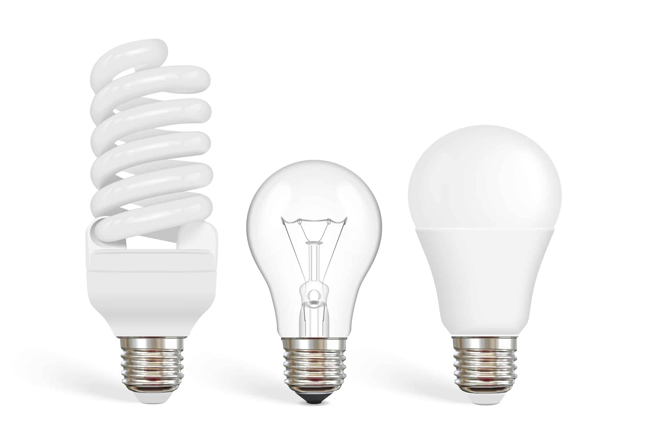 transparent incandescent bulb, fluorescent and led bulb vector