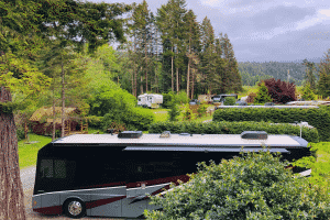 Various RVs at a wooded campground.