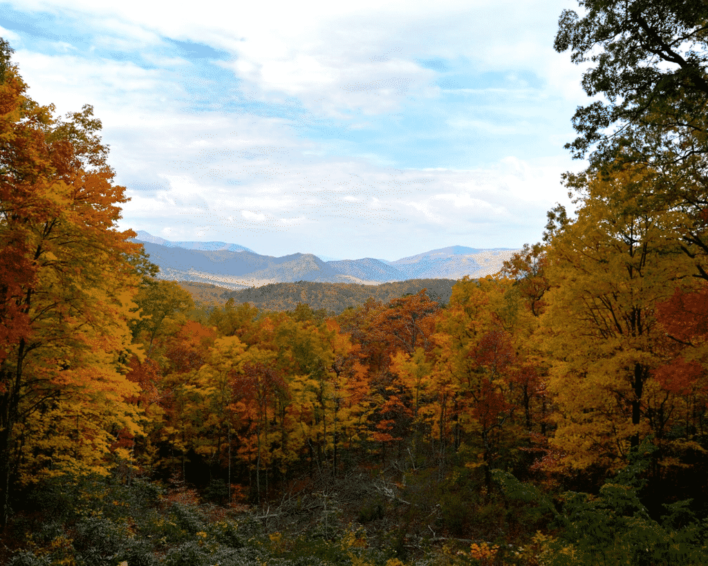Fall view of the Great Smoky Mountains