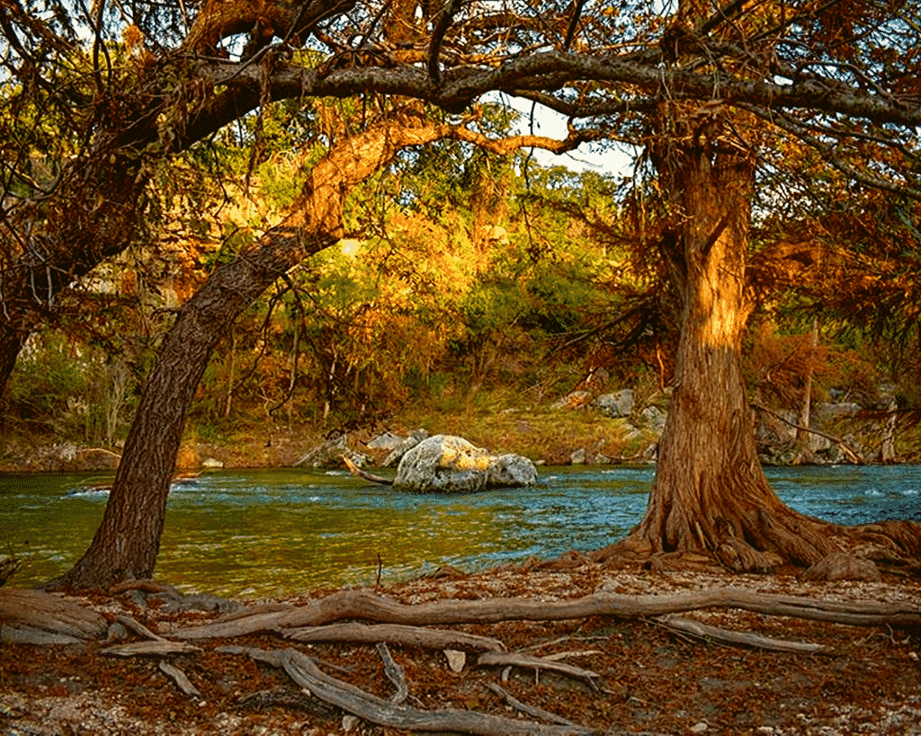 Scenic view along the Guadalupe River.