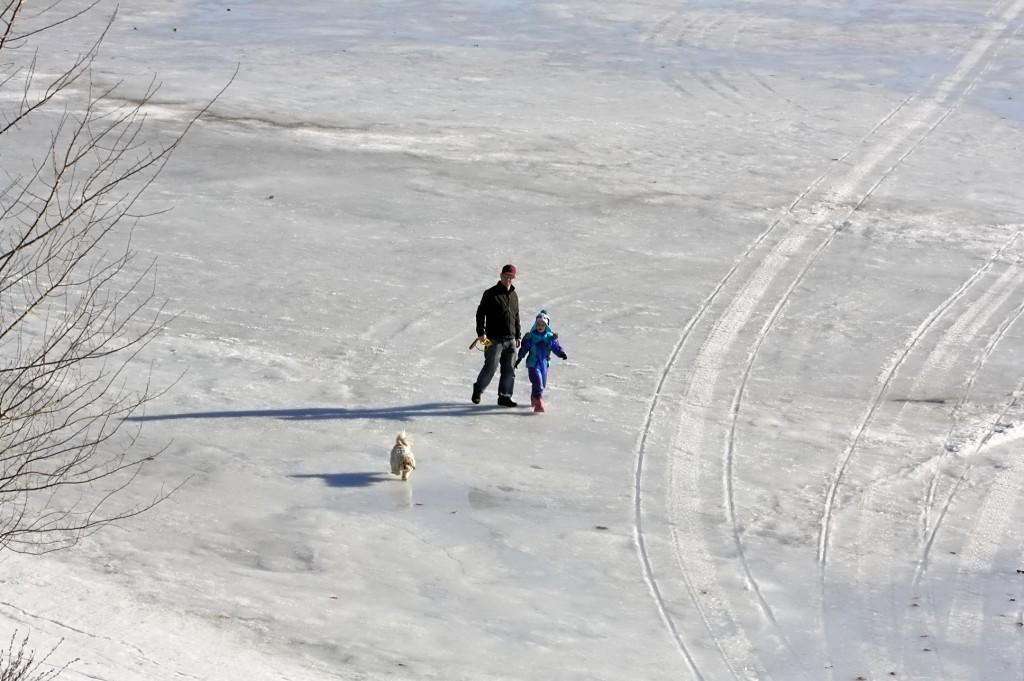Iceyfamilydog walk