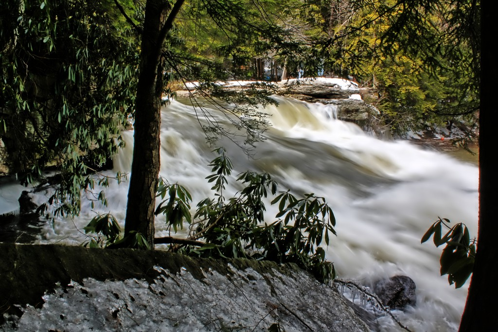 The Spring Thaw at Swallow Falls State Park