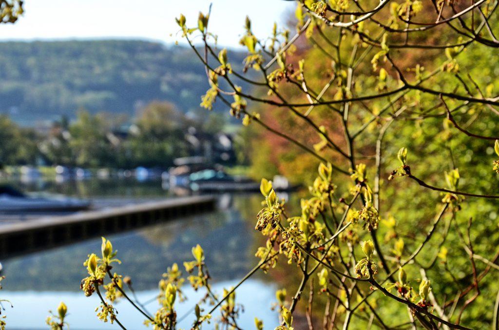 Springtime Weather Update Deep Creek Lake May 19, 2016