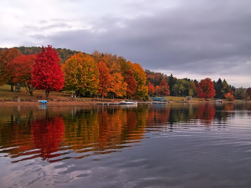 The Fall Foliage Season photographed from a Paddleboard