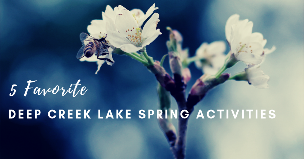 Deep Creek Lake Spring Activities