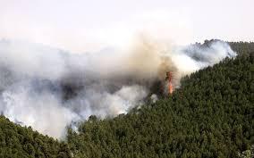 Incendios forestales en Guatemala. Redes