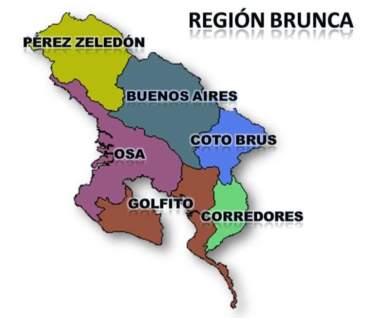 Universidades públicas, instituciones y comunidades de la Región Brunca  buscarán el desarrollo regional – Diario Digital Nuestro País