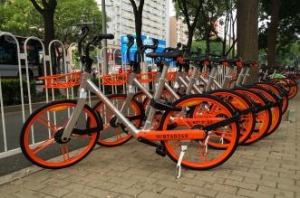 Bicicletas chinas. Archivo