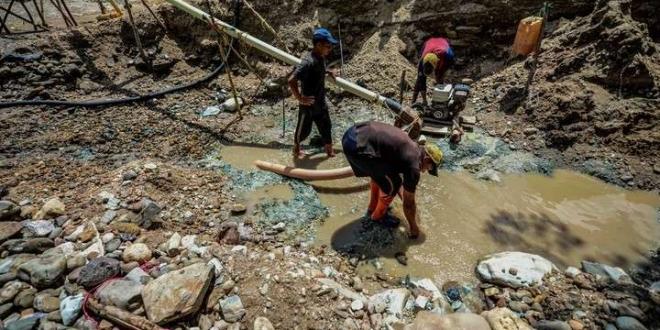 Minería ilegal en lla Amazonía. Redes