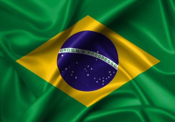 Brasil suma ya 159 muertes por el coronavirus – Diario Digital Nuestro País