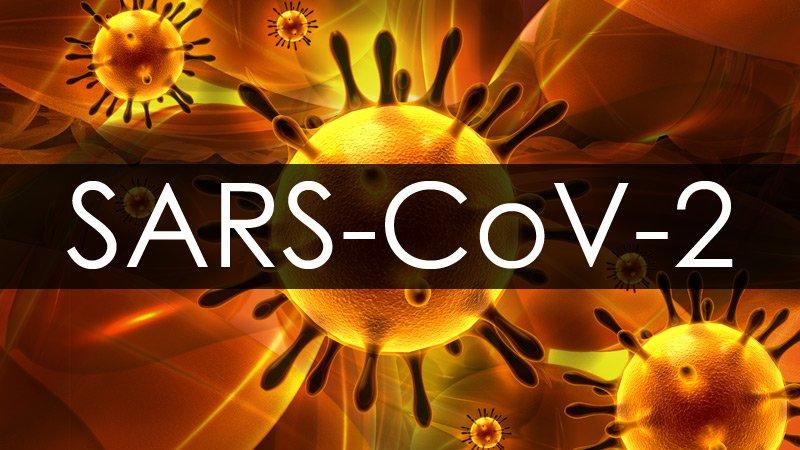 The Lancet retira estudio chino sobre origen del SARS-CoV-2 en India