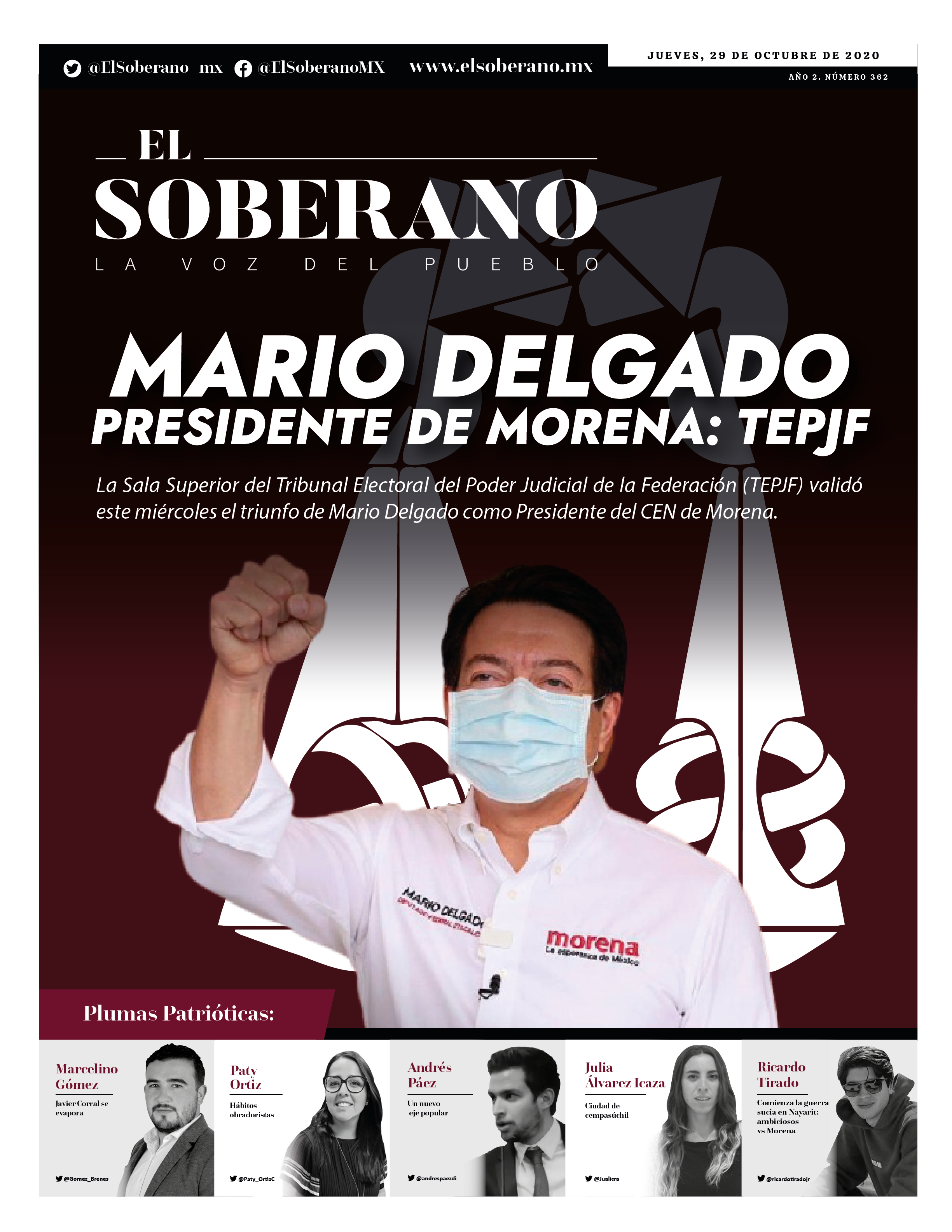 Mario Delgado, Presidente de Morena: TEPJF