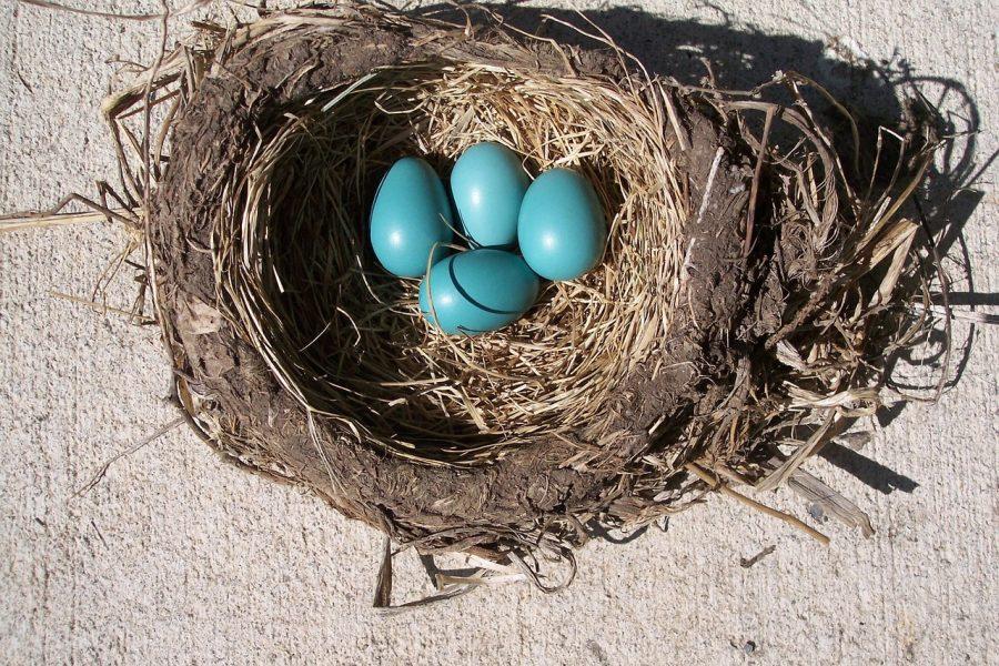 Binance announces 3rd season of its incubation program