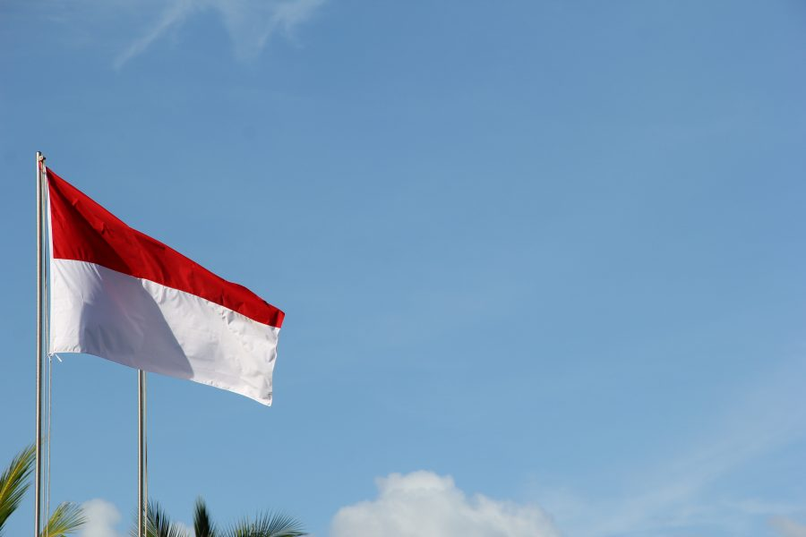 Indonesia's second DLT project aims to support micro-SMEs and entrepreneurs