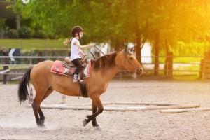 Bambina su cavallo
