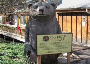 Big Bear Alpine Zoo