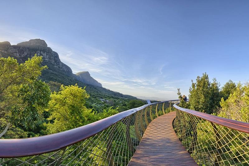 Passarela no Kirstenbosch National Botanical Garden na Cidade do Cabo