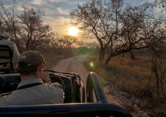 Parque Nacional Kruger nas proximidades de Joanesburgo