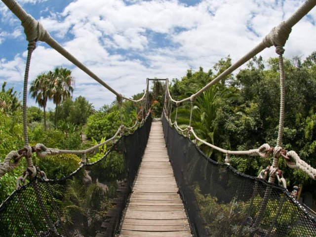 Paisagem do Jungle Park in Tenerife