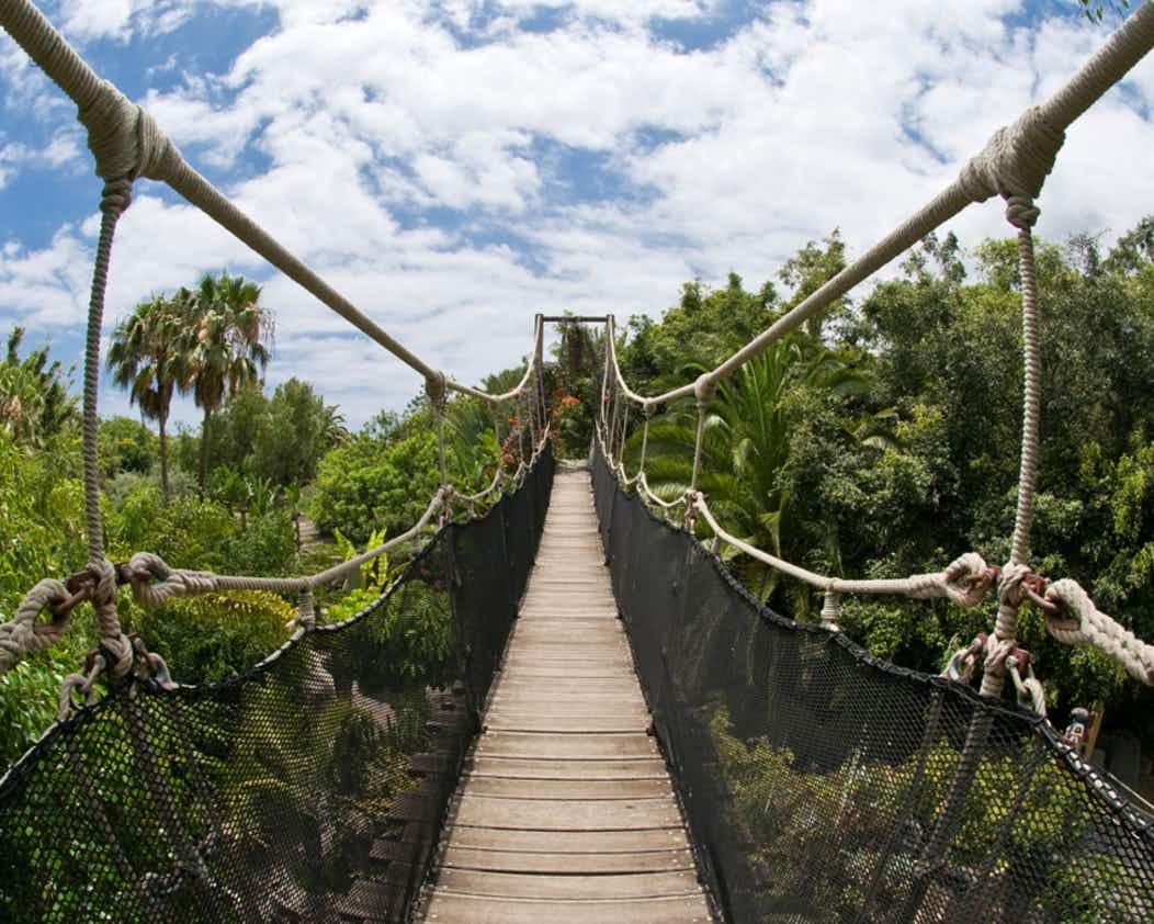 Paisagem do Jungle Park in Tenerife