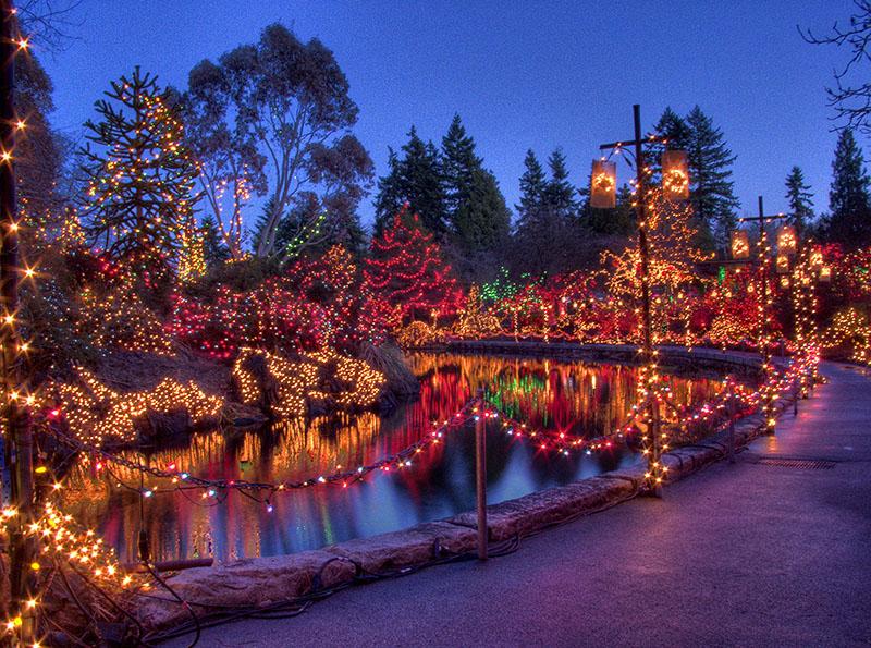 Jardim Botânio Van Dusen no Natal em Vancouver