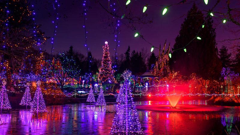 Excursão de Natal no Light Festival em Vancouver