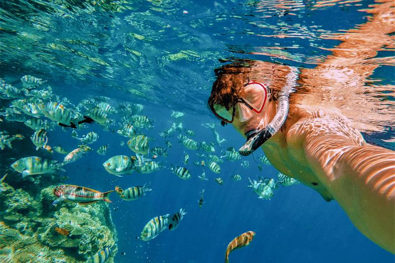 Los Cabos - Snorkel