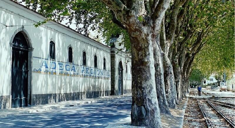 Edifício da Adega Regional de Colares em Sintra