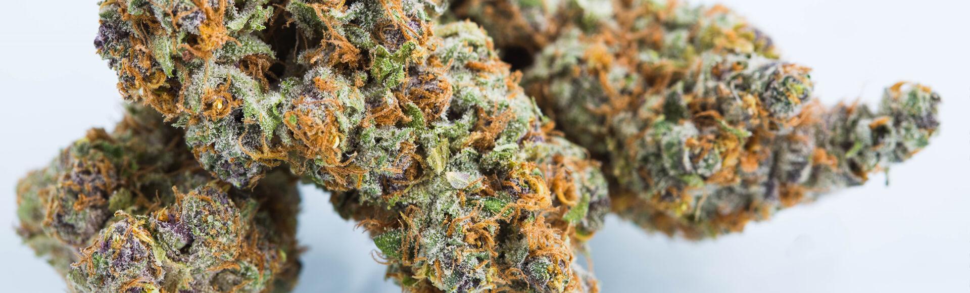 Many strains of Cannabis. Choose high CBD or high THC RSO.
