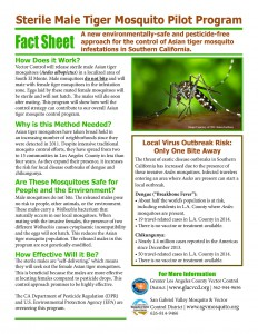 Sterile Male Tiger Mosquito Fact Sheet