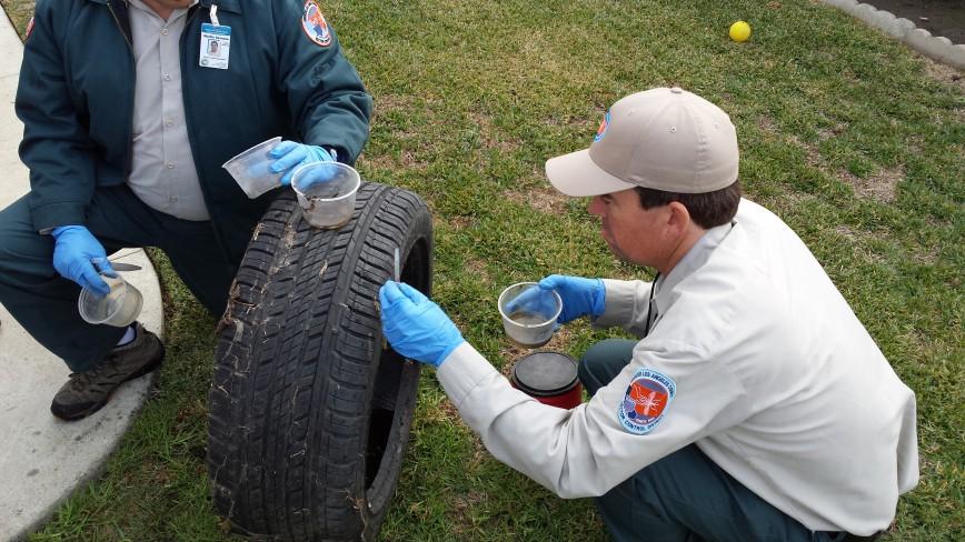 Vector control checking tires