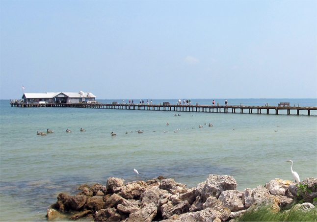 Historic City Pier Anna Maria – Take A Stroll on Tampa Bay