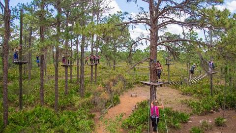TreeUmph Adventure Courses