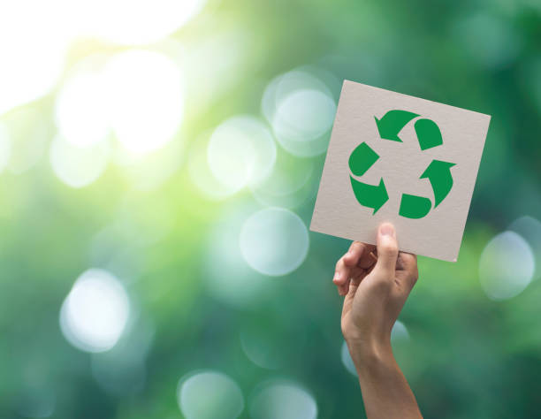 Rear Door Recycling Pick-up Now Available in Holmes Beach