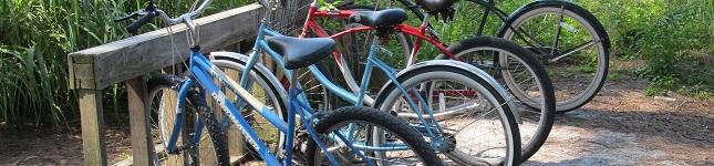 Coquina Bike Path in Bradenton Beach – Anna Maria Island's Best on The Beach