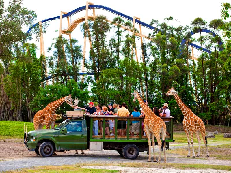 Theme Parks And Water Parks A Few Hours Away From Ami Island Real Estate Blog