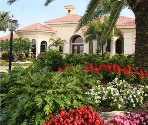 Local Lawn Care – Stewart's Landscape Management