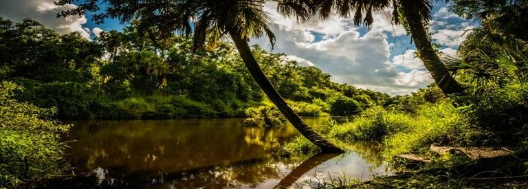 Rye Preserve – Experience Old Florida in Parish